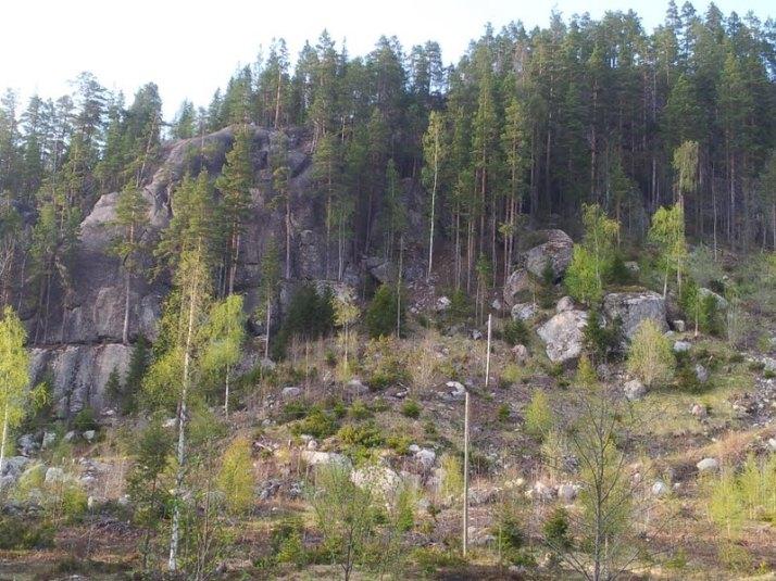 Bergviksberget. Grymt bra sprick-klättring.
