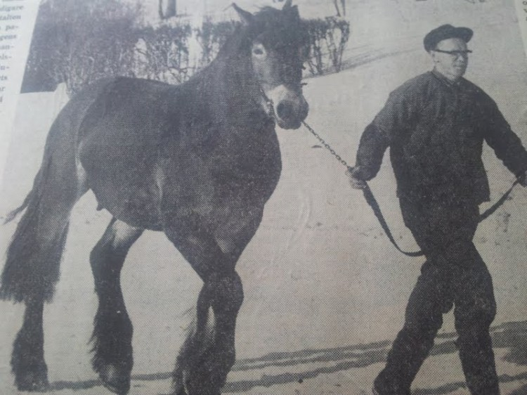 Förra året fick jag ett album med tidningsurklipp av min faster. Den här bilden på min pappa var med i ÖP 1964.