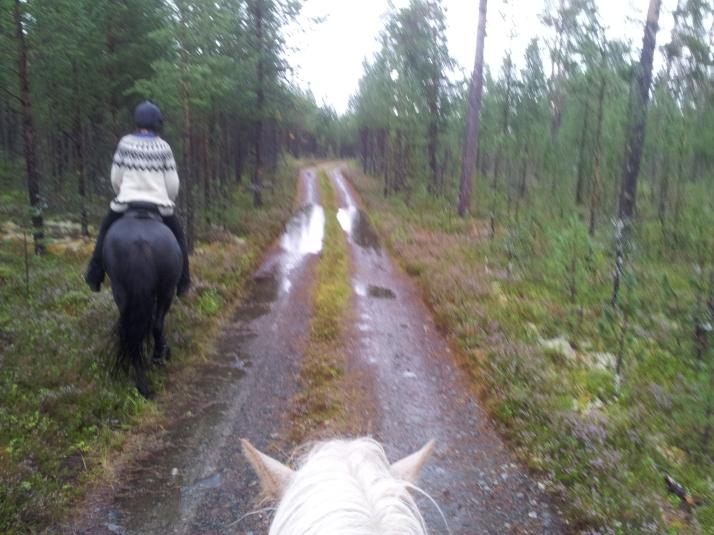 Gamla ridleden mellan Vallbo och Ottsjö. Tova och Skugglisa rider i täten.