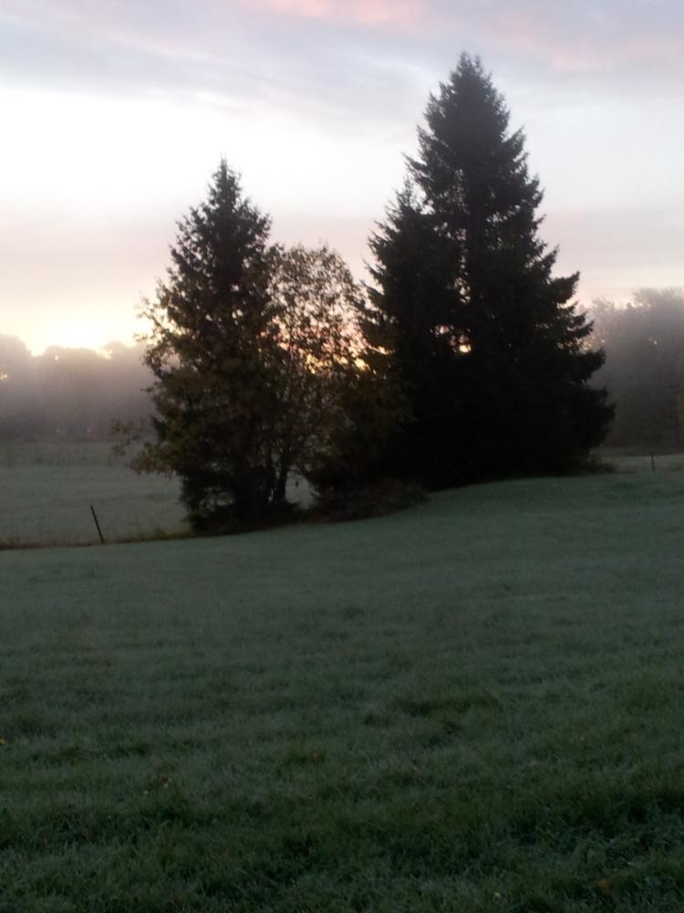 Solen letade sig fram på morgonen och mitt på dagen blev det en jättefin höstdag.