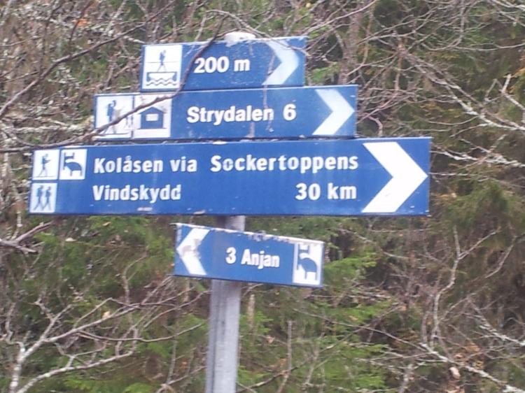 Gårdagens tur blev fram och tillbaka till Strydalen. Nästa gång får det bli övernattning   så att vi kan nå fram till Sockertoppen.