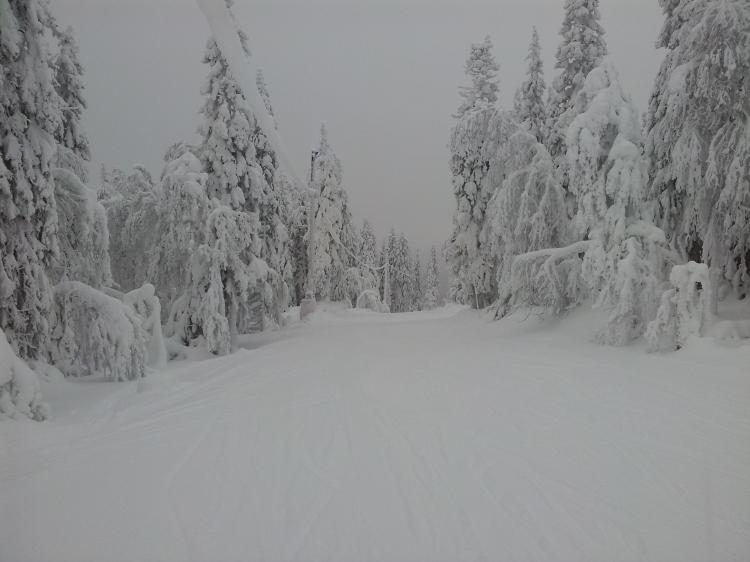 En av årets första skiddagarna i Almåsa. Inte så många nedfarter men det är sällan liftkö och då blir det mycket åktid.