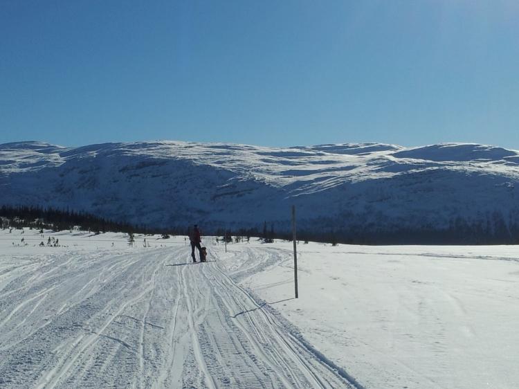 En av många fina dagsturer på Ottsjöplatån, en tur som aldrig gör mig besviken.