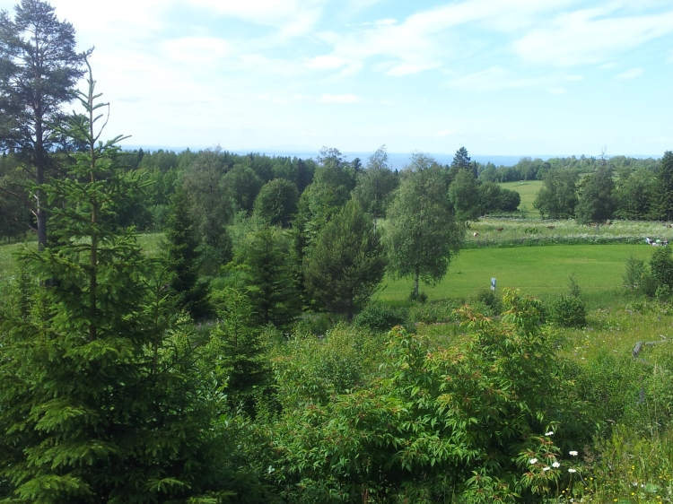 Utsikten från Frösvallen.